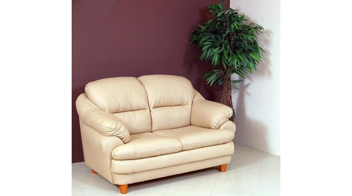 Кожаный двухместный диван Sara (Сара) - 3