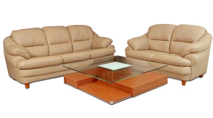 Кожаный двухместный диван Sara (Сара) - 2